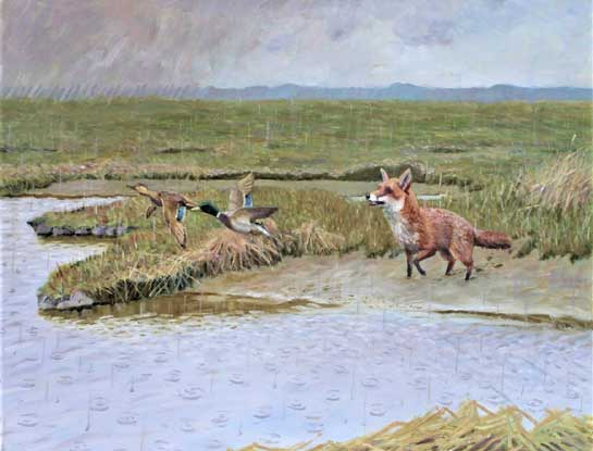 saltmarsh by bird Artist John Sinnott